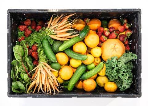 ארגז ירקות