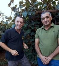 """ירון בלחסן מנכ""""ל ארגון מגדלי הפירות  והדבוראי בועז בן זאב"""